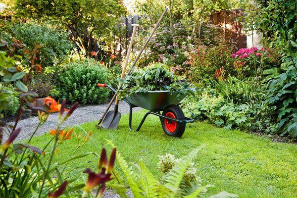 Tipps, wie Sie ihren Rasen unkrautfrei halten.